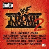 WWF Tough Enough, Vol.2 [UK] Album Cover
